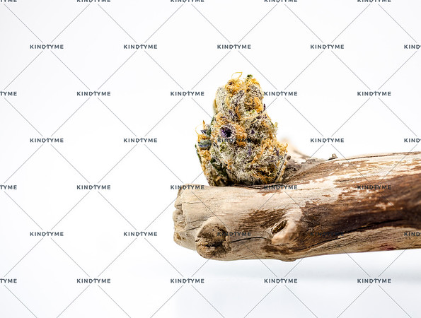 Jelly Sickle Processed Cannabis Flower  on Pine Driftwood