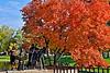 DJRI_copyright_2013-10-12@15-37-47