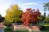 DJRI_copyright_2013-10-12@15-20-38