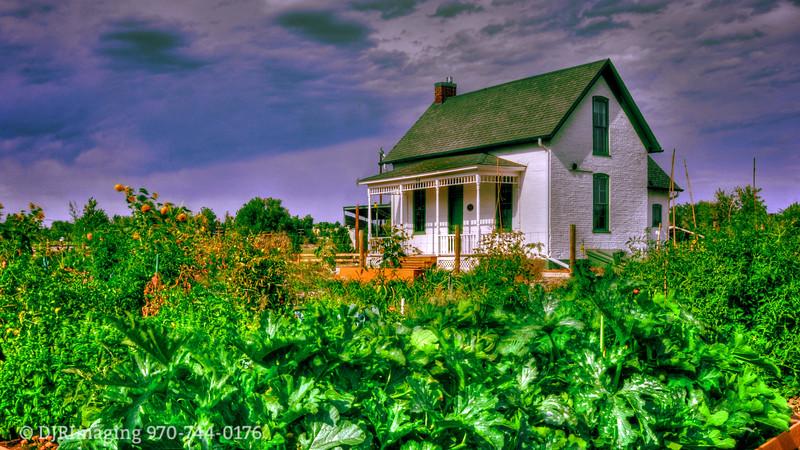 Milner-Schwarz House Garden