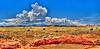 American Desert - Arizona