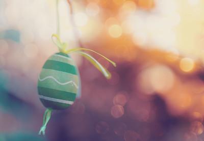Easter eggs on tree with bokeh
