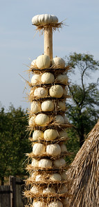 Ripe autumn pumpkins arranged on totem in farm