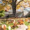 HSC Campus Fall 2016