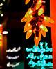 DJRI_copyright_2013-12-27@18-51-19
