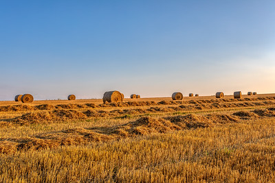 Straw bales stacked in a field at summer time in sunset