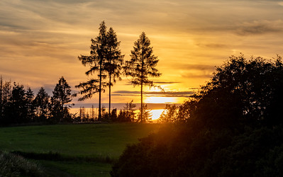 summer sunset in countryside