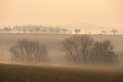 Spring foggy and misty sunrise landscape