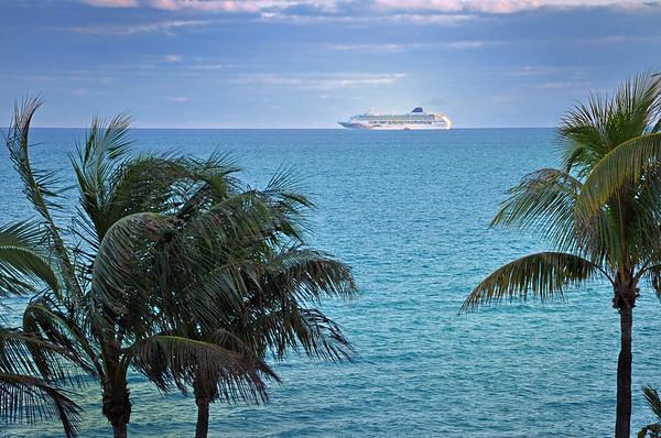 DSC_2164 cruise ship-palms