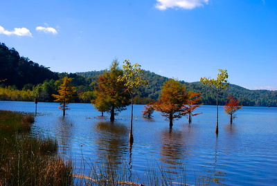 Tennessee Lake