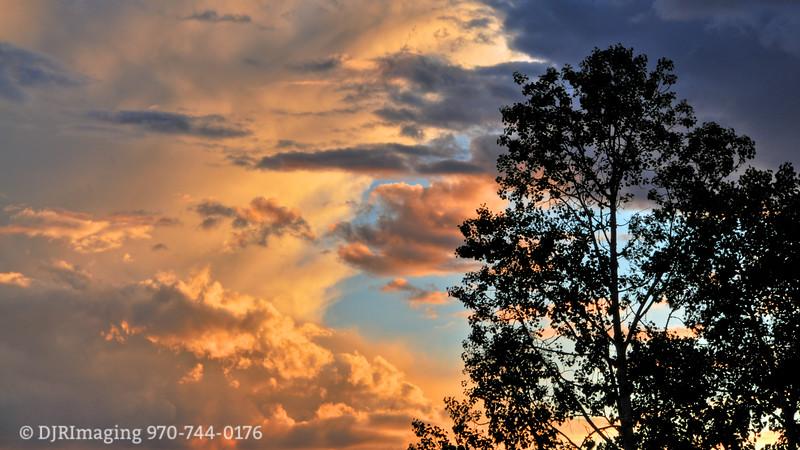 DJRI_copyright_2011-08-22@18-42-51