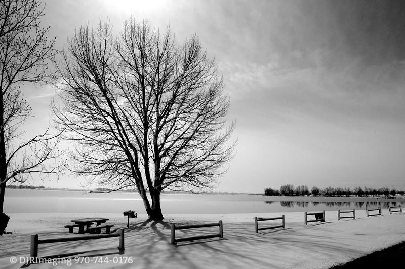 DJRI_copyright_2010-03-24@10-40-55