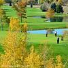 DJRI_copyright_2012-10-14@12-59-49