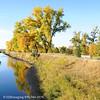 DJRI_copyright_2010-10-16@08-17-26