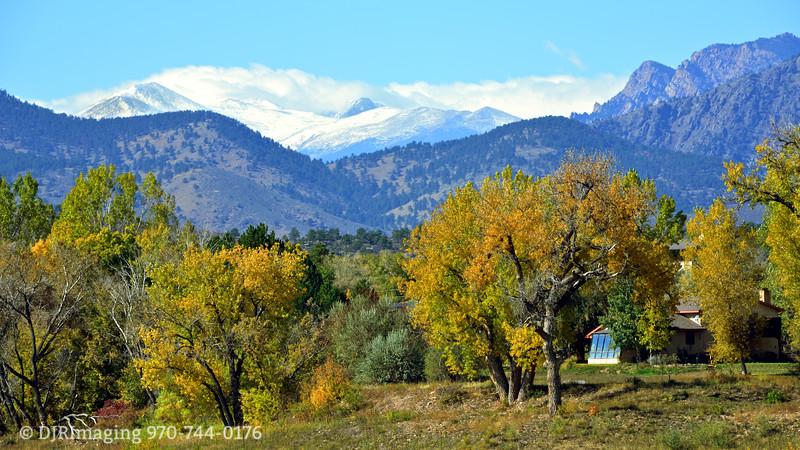 DJRI_copyright_2012-10-14@12-52-41