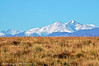 Longs Peak Beyond a Grassy Knoll