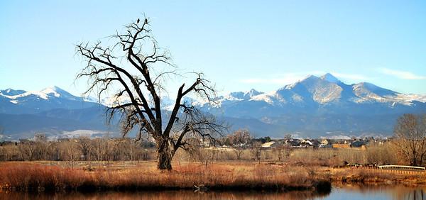 Northern Colorado Views