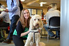 Michelle Poland with therapy dog Marlon Brando - Photo by Paige Nesbit, Statler College