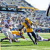 WVU running back Leddie Brown turns toward the endzone during WVU's home game against Kansas State, Oct. 31, 2020. Photo: Corbin Mills