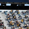 WVU fans social distance as they cheer on the Mountaineers during their home game against Kansas State, Oct. 31, 2020. Photo: Corbin Mills