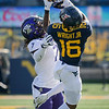 WVU receiver Winston Wright Jr. reels in a pass over a TCU defender, Nov. 14, 2020. Photo: Geoff Coyle