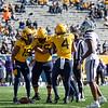 The WVU offense celebrates a yard gaining play during their home game against Kansas State, Oct. 31, 2020. Photo: Corbin Mills
