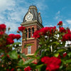 Woodburn Cirlcle with flowers in full bloom on june 10, 2020. (Photo Chris Young).