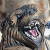Growling Black Bear wood carving