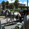 Horse and Buggy Ride Naval Dockyard Bermuda