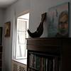 Ernest Hemingway's Office - Key West, FL