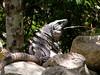 Mexico 2005_08_ (119) r