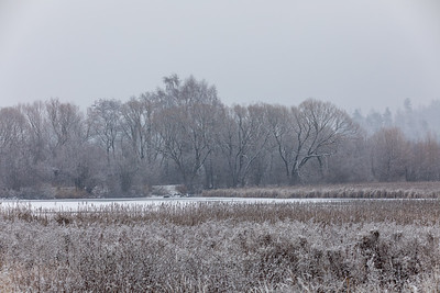 Winter landscape covered with snowfall