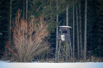 Wooden hunting tower in forest