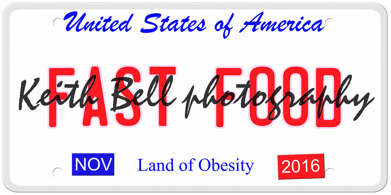 An imitation United States of America license plate with the words FAST FOOD and Land of Obesity on the bottom making a great concept.