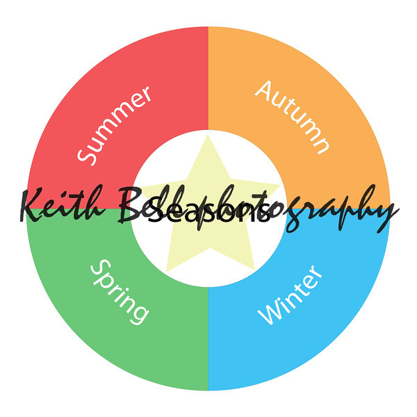 Seasons circular concept with colors and star
