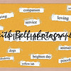 Pet Therapy Corkboard Word Concept