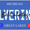 An imitation Michigan license plate with December 2014 stickers and WOLVERINES written on it making a great concept.  Words on the bottom Great Lakes.
