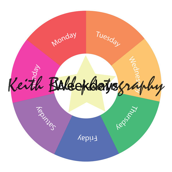 Weekdays circular concept with colors and star