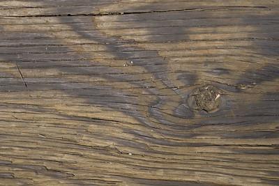 Cracks in Hardwood Boards