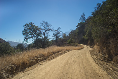 California Hillside Dirt Road