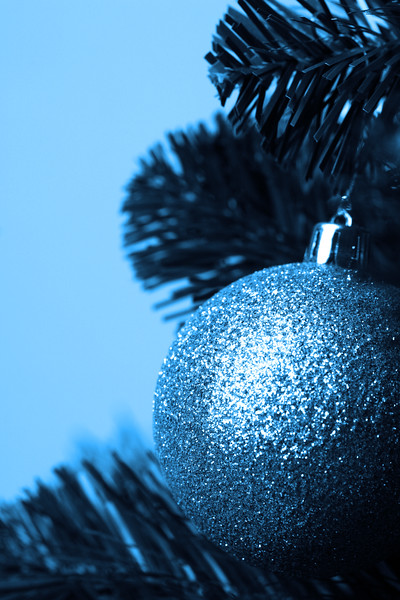 Silver ball on branches