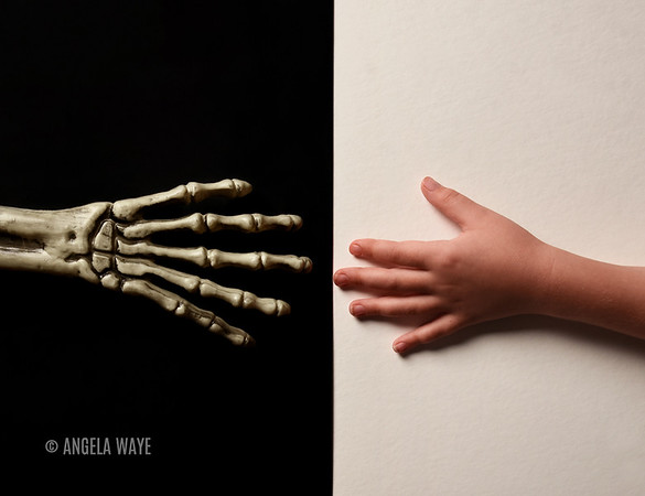 Skeleton and Child's Hand Touching