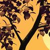 tree silhouette in the sunbeam