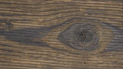 Detail of Wood Knothole