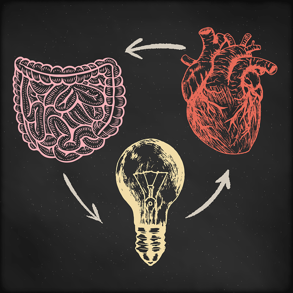 How Your Gut Causes Brain Fog and How to Fix It - AdobeStock 130547831 WEB gut heart brain cycle L