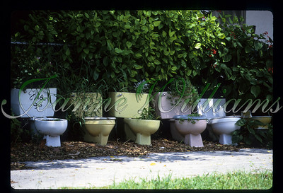 Line up of colored toilets, USA, Florida