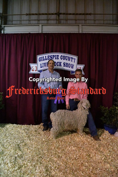 Stock Show sheeps goats 1-25-17