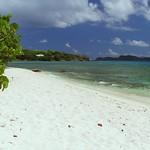 0034 tropical shoreline at Sapphire Beach, St Thomas