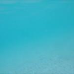 0042 women swimming underwater in turquoise water