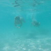0040 women swimming underwater in turquoise water